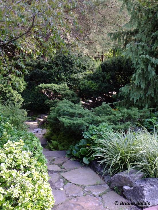 James Gardens -Toronto